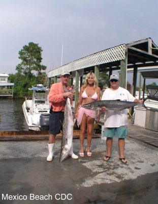 Mexico beach florida photo album king fish tournament for Fishing mexico beach fl